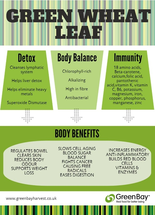 Green Wheat Leaf Infographic2